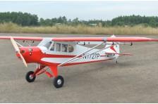 Black Horse PA-18 Super Cub 120cc ARTF