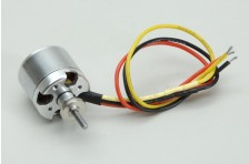 Brushless Motor - Arcus M
